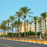 Car rental Netanya